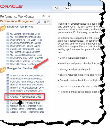 Approve Performance Docs screenshot